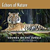 Echoes of Nature: Sounds of the Jungle