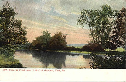 Codorus Creek Near Ymca Grounds York  Pennsylvania Original Vintage Postcard