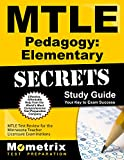 MTLE Pedagogy: Elementary Secrets Study Guide: MTLE Test Review for the Minnesota Teacher Licensure Examinations