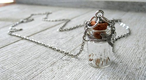 Wishing Jar Bottle Necklace Dandelion Seed Necklace Make A Wish Pendant Necklace Glass Vial Detachable Removable Cork Lid ()