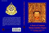 A Book of Common Tibetan Buddhist Prayers : From the Shambhala Prayer Service for Universal Peace, Blazing Wisdom Institute, Tulku Sherdor, 0980173019
