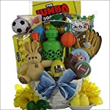 GreatArrivals Gift Baskets Egg-Streme Sports Easter Gift Basket for Boys, 3 Pound