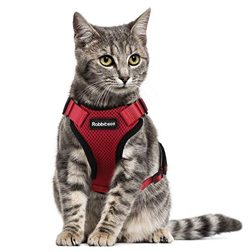 - Rabbitgoo Cat Harness Escape Proof Pet Harness Adjustable Small Dogs Cats Vest Harnesses Reflective Best Safety and Comfort Soft Mesh Kitten Puppy Harness, Red