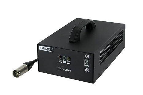 200W Automático Cargador de Plomo 24V 8A para Electro ...