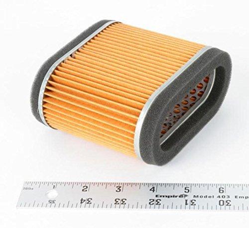 Hiflofiltro HFA2905 Premium OE Replacement Air Filter