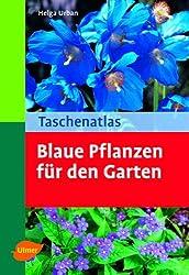 Taschenatlas Blaue Pflanzen für den Garten: 136 Pflanzenporträts