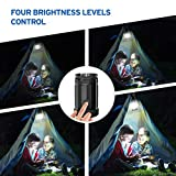 Etekcity 2 Pack Portable LED Camping Lantern Flashlights 6 AA Batteries - Survival Kit Emergency, Hurricane, Outage (Black, Collapsible) (CL30)