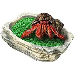 SunGrow Small Hermit Crab Feeding Bowl - Keeps Crabitat Mess-Free - Durable, Attractive, Multifunctional Decor - Serve as Climbing Toy or Drinking Bowl, Swimming Pool and Much More