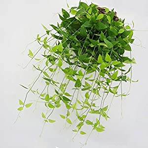 """MingXiao Artificial Plants 37.8"""" Artificial Ivy Leaf Flower Vine Rattan Garland Plants Clematis Decoration Honeysuckle Leaves Simulation Wall Hanging 106"""