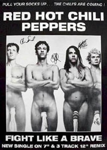 autographed red hot chili peppers - 5