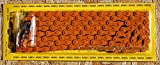 Made In Taiwan! YABAN COLORED BICYCLE CHAIN - All Orange, 1/2X1/8 X 112L, FOR SINGLE 1-SPEED, FIXIE FIXED GEAR ROAD BIKES AND BEACH CRUISER BIKES by Yaban