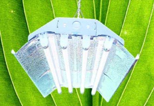 T5 Grow Light (2ft 4lamps)