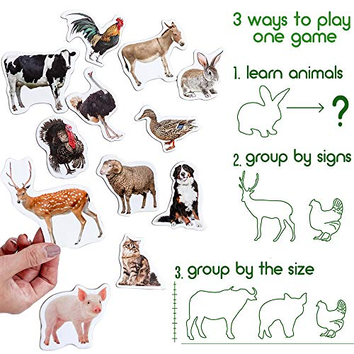 MAGDUM Zoo+Farm ANIMALS 40 magnets for kids-real LARGE fridge magnets for toddlers-Magnetic EDUcational toys baby 3 year old baby LEARNing magnets for kids-Kid magnets Magnetic THEATRE animal magnets