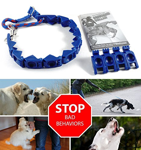 NEW XXL Size Perfect Dog Command Collar Training Pets Prong Choke Chain (Dog Snap Millan Cesar Leash)