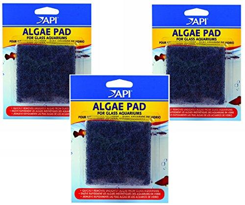 (3 Pack) API Hand Held Algae Pad - Glass