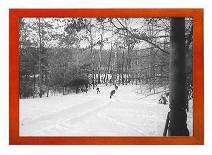Amazon Pupbeamo Winter Scene Art Print Picture Frame Photo