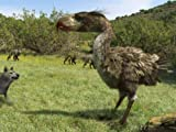 monsters inc amazon video - Terror Bird
