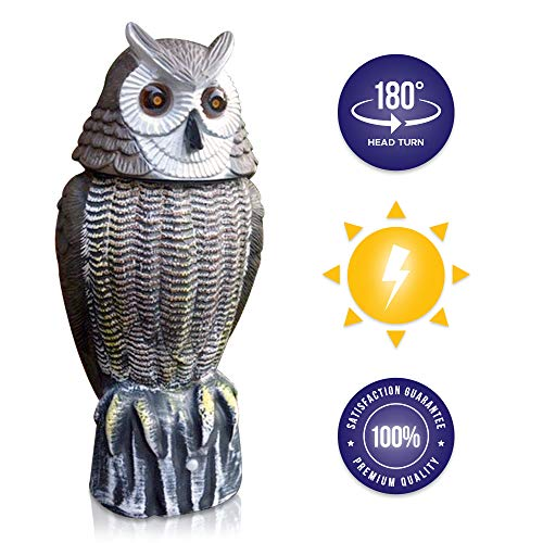 Lijo Solar Owl Animal Scarecrow Rotating Head Owl Decoy, New and Improved 2019 (Scarecrow Garden For)