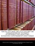 YOU'VE GOT MAIL--BUT IS IT SECURE? AN EXAMINATION OF INTERNET VULNERABILI-TIES AFFECTING BUSINESSES, GOVERNMENTS AND HOMES