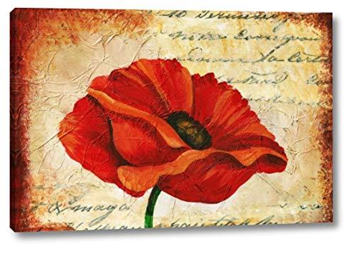 Poppy Script by Tiffany Budd - 13