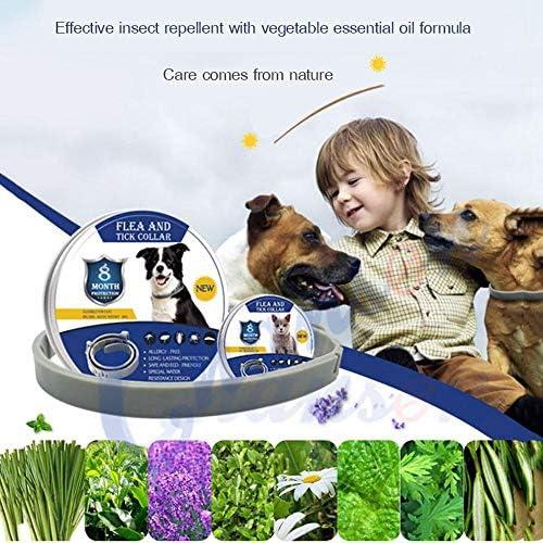 OOOOUSE Hundehalsband gegen Flöhe und Zecken, wasserdicht und verstellbar, 8 Monate Schutz, natürliche Halsbänder, 62 cm Hund