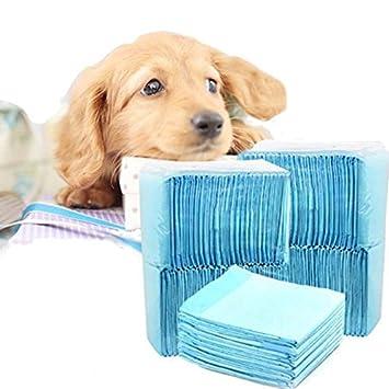 shanzhizui Pañales para Mascotas Desodorización Pañales para Perros Almohadilla para Perros Absorbente 33 * 45CM,