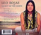 Spirit of the Hawk