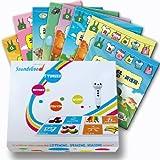 Chinese Learning Talkingpen Kit (Soundsgood Talkingpen and Preschool Series 8books)
