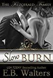 Slow Burn (The Fitzgerald Family Book 1)