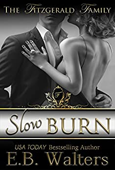 Slow Burn Fitzgerald Family Book ebook