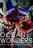 Ocean Wonders: Inside the Monterey Bay Aquarium [Blu-ray]