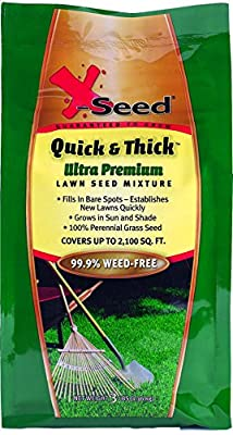 X-Seed Quick & Thick Southern Lawn Seed Mixture, 3 lb, Green