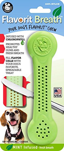 Pet Qwerks Flavorit -Breath/Mint Flavored Nylon Bone for Aggressive Chewers (Made in the USA) - Mint Dog Chews