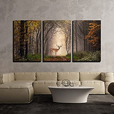 Fallow Deer Standing in a Dreamy Misty Forest with Beautiful Moody Light x3 Panels