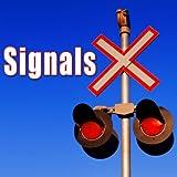 Seatbelt Warning Signal from BMW