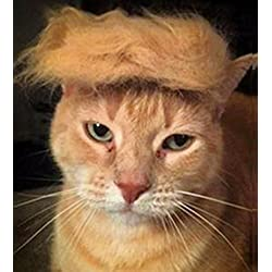 Trump Style Cat Wig Pet Costume, Donald Dog Head Wear Apparel Toy for Halloween, Christmas, parties, festivals by FMJI