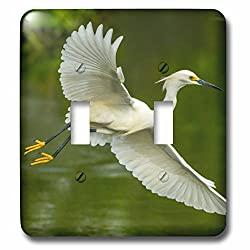3dRose Danita Delimont - birds - USA, Louisiana, Jefferson Island. Snowy egret in flight over lake. - Light Switch Covers - double toggle switch (lsp_259371_2)