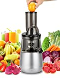 Slow Masticating Juicer by Tiluxury , Low Speed With Wide Chute Anti-Oxidation ,Whole Fruit and Vegetable Vertical Cold Press Juicers(250W AC Motor,40 RPMs,3″ Big Mouth),BPA Free (Silver Gray)