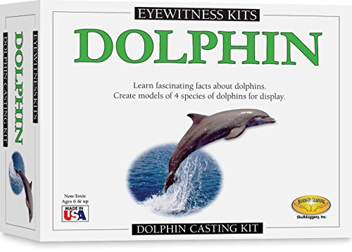 Skullduggery Eyewitness Kits Perfect Cast Dolphin Cast, Paint, Display and Learn Craft Kit (Skullduggery Eyewitness Kit)
