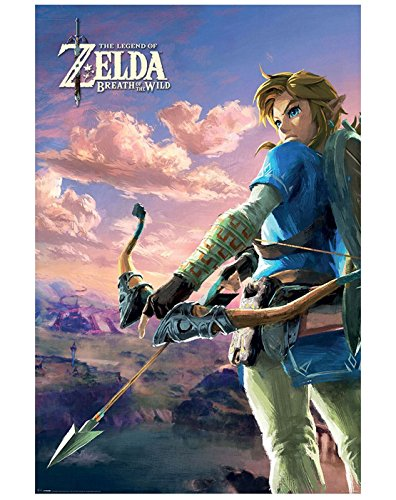 link breath of the wild poster