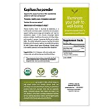 Banyan Botanicals Kapikacchu Powder, 1 Pound - USDA Organic - Mucuna pruriens - Natural Source of