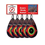 Bird B Gone Reflective Scare Bird Diverter (Set of 5)