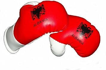 Sportfanshop24 Mini Boxhandschuhe Albanien 1 Paar 2 Stück Miniboxhandschuhe Z B Für Auto Innenspiegel Auto