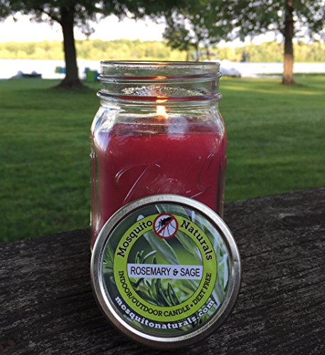 Rosemary Sage Mosquito Repellent Indoor/Outdoor Candle made our list of gift ideas rv owners will be crazy about that make perfect rv gift ideas which are unique gifts for camper owners