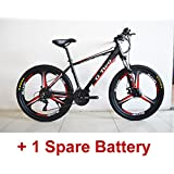 G8 26 inches Hidden Battery Pedal Assist Electrical Bicycle, 48V 250W, Aluminum Alloy Frame, Disc Brake, 21 Speed E Mountain Bike, Integrated/Spoke Wheel,Pedelec.