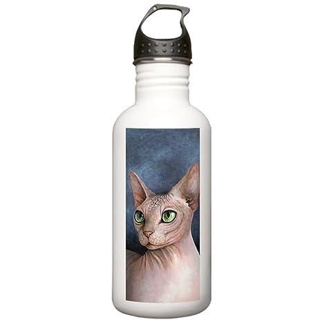 Amazon.com: CafePress – Cat 578 Sphynx Botella de agua ...