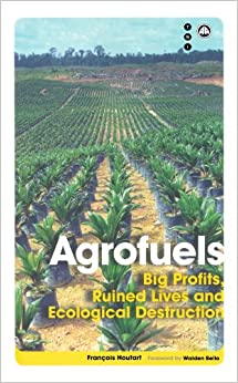 Book Agrofuels: Big Profits, Ruined Lives and Ecological Destruction (Transnational Institute)