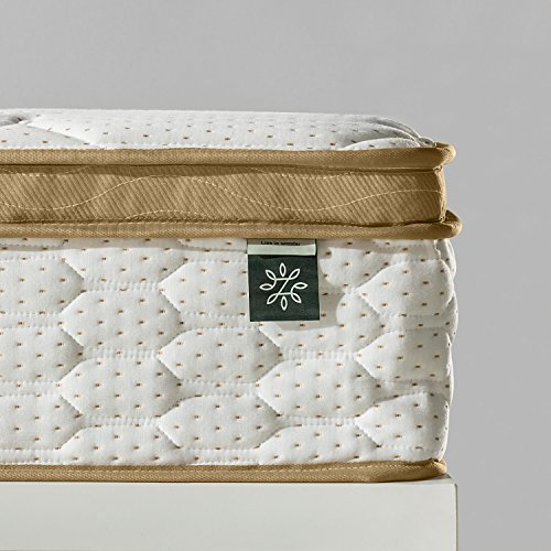 Zinus 10 Inch BioFusion remembrance expanded polystyrene Hybrid Spring Mattress Queen