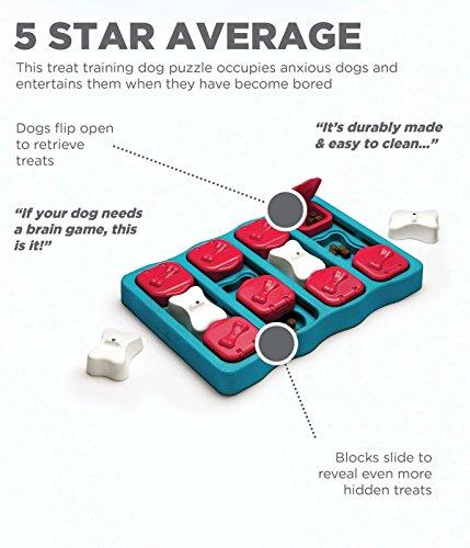 Outward Hound Nina Ottosson Puzzle Brick Dog Toy 2