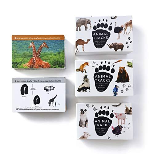 3 세 어린이를위한 메로 코 동물 플래시 카드 몬테소리 그림 카드 3 년 동안 유치원 학습 장난감